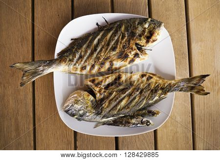 Grilled gilthead fish overhead close up shoot.