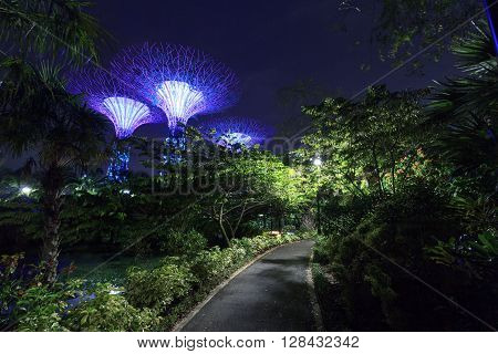 Singapore, Singapore - January 14, 2016: Supertree grove and footpath at night in Gardens by the Bay. Supertrees are tree-like structures that dominate the Gardens landscape. Gardens by the Bay is a park in central Singapore.