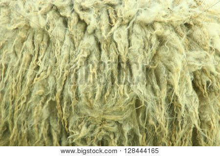 natural texture completely from light thick fleece