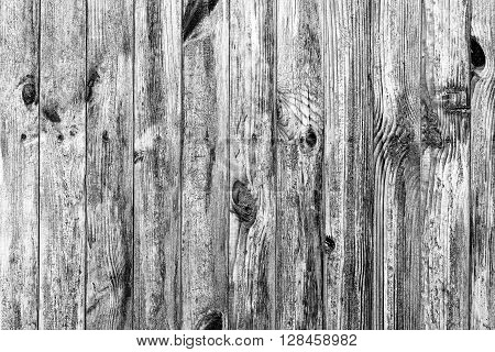 Wall Of  Wood Texture Background Macro Black And White