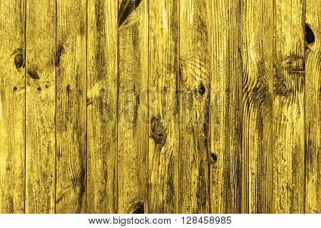 Wall Of Golden Wood Texture Background Macro
