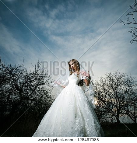 Beautiful Bride In Dusk