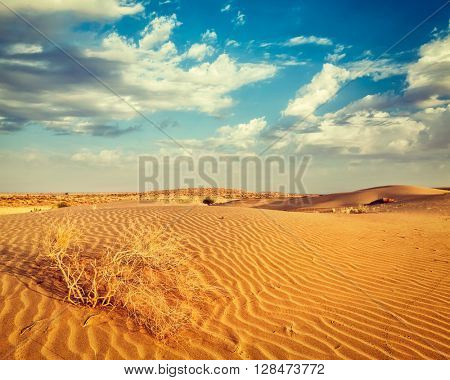 Vintage retro effect filtered hipster style image of  dunes of Thar Desert. Sam Sand dunes, Rajasthan, India