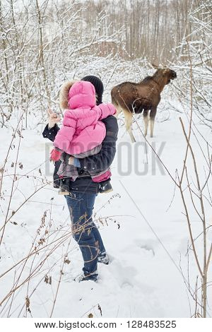 Young man with baby in arms takes snapshot of elk feeds in winter park.