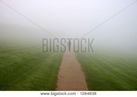 Een Man Walking In aan de Mist