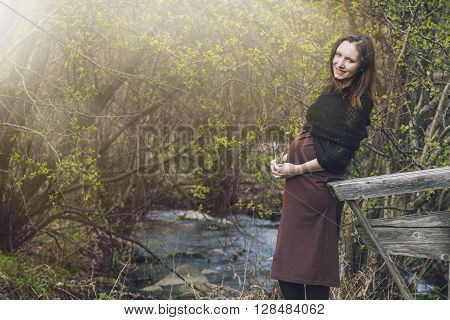 Young Beautiful Pregnant Woman Smiling On The Background Landscape Nature