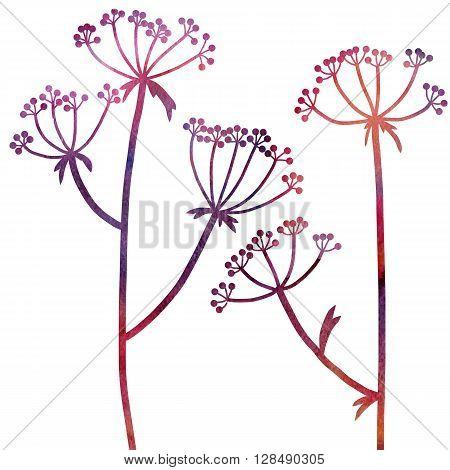 dill plants drawing in watercolor, floral composition with wild plants, drawing floral card, watercolor artistic background, hand drawn  illustration