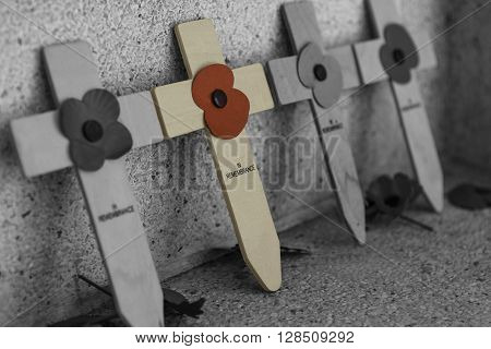The poppy cross for a remembrance day