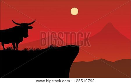 Silhouette of bull on the cliff with red backgrounds