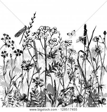 Hand drawn border with black and white herbs and flowers