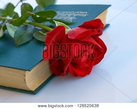 Red rose with stem and leaves laying on the closed green book