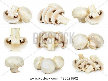 Sliced Champignon Mushroom Isolated