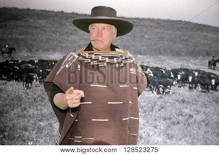 A handsome man wears a Mexican style poncho and hat while he poses against a green screen with cattle in the background on a Green Screen Photo Booth. Photo Booths are great fun for everyone.