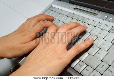 Fingers On Laptop