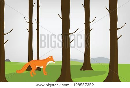 Vector illustration cloudy autumn forest landscape and red cute fox. Forest background