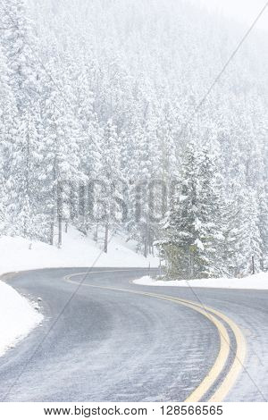 Beautiful winter scene with icy slick road driving situation curving road covered with snow and snowy trees all around