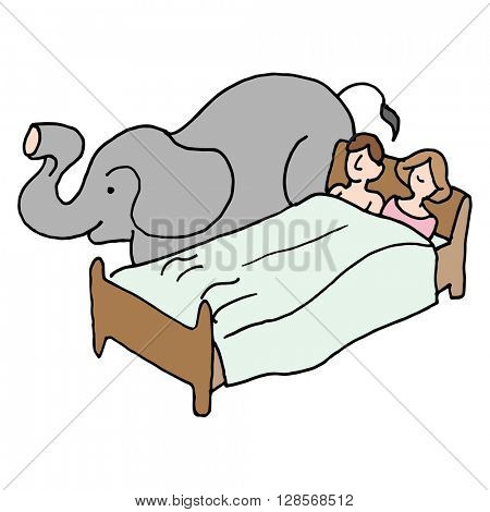 An image of a bedroom couple elephant in the room.