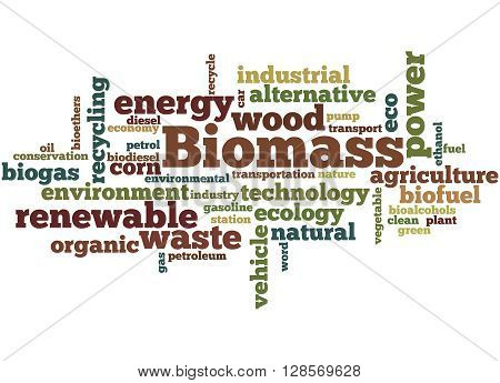 Biomass, Word Cloud Concept 2