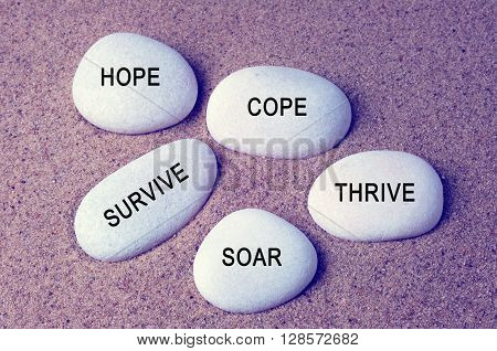 Inspirational words - hope cope survive thrive and soar text on a zen stones vintage background