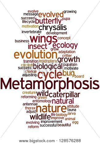 Metamorphosis, Word Cloud Concept 2
