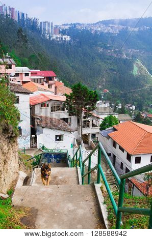 Charming village of Guapolo in Quito Ecuador with houses built downward valley, spectacular view Andes mountains. poster