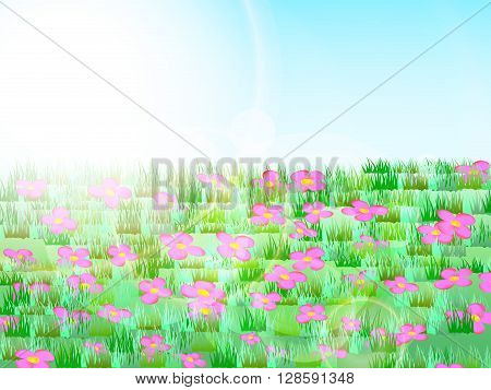 Meadow with green grass, pink flowers, blue sky and sunlight, tranquility, calm, peace, vector illustration