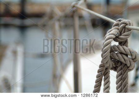 Nautic Knot