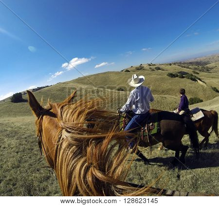Point of view photo from horseback on California ranch.