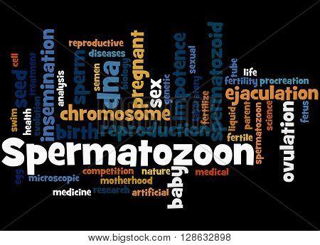 Spermatozoon, Word Cloud Concept 6