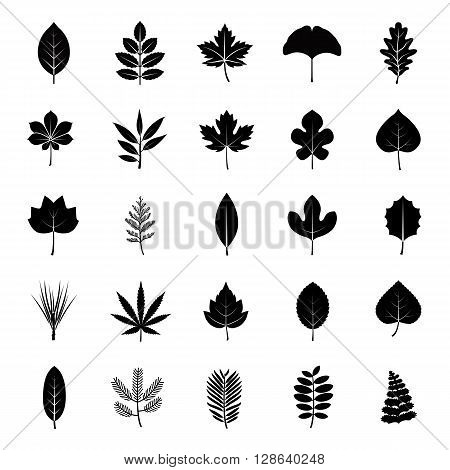 Set pf leaves of plants or trees glyph vector icons
