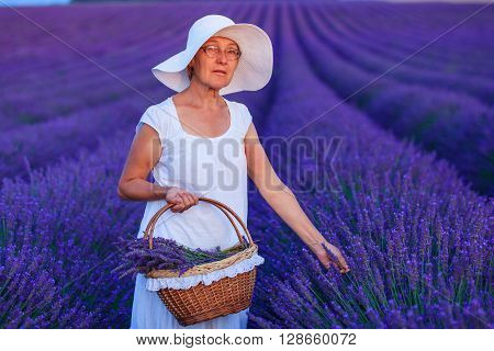 Senior woman admiring the lavander fields in Valensole. Provence, France.