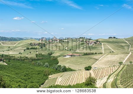 Langhe,Piedmont,Italy,Europe - May 3, 2016 : View of vineyards, fields and villages in Barbaresco zone
