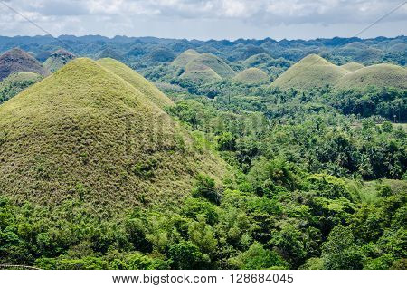 Green Chocolate Hills in summer time, Bohol Island, Philippines