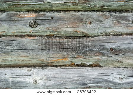 Colorful old wooden texture of a blockhouse building.