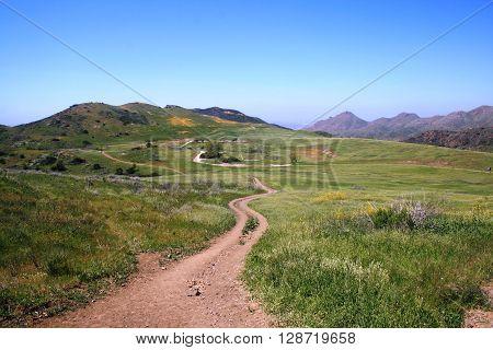 Hiking trail leading through a meadow toward distant mountains, California