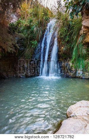 The picturesque waterfall and small deep lake with emerald water. Walk in the Ein Gedi Nature Reserve