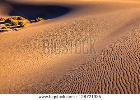 Mesquite Flat Sand Dones in Death Valley. Orange light in the morning over sand dunes. Deep shadows in the hollows