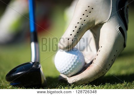 golf player placing ball on tee. beautiful sunrise on golf course landscape  in background