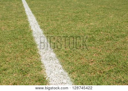 Baseball Field Line