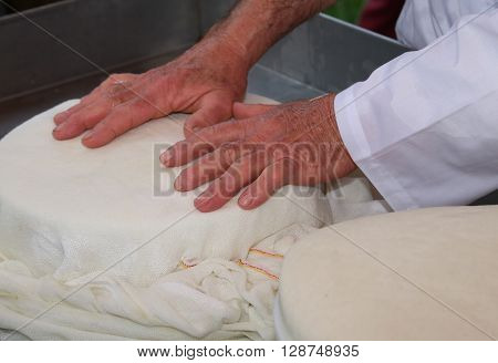 Hands Of An Old And Expert Cheesemaker Over The Freshly Cheese In The Dairy