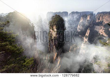 Zhang jia jie National Forest Park, Hunan, China