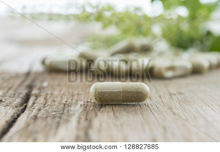 Herb capsule Nutritional Supplement Vitamin Pill Herbal Medicine.
