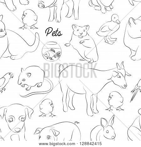 Animals pets vector pattern. Illustrations of various domestic animals - dog, cat, parrot, fish, pig, bunny and other