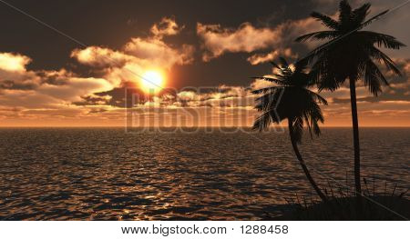 Golden Tropical Sunset