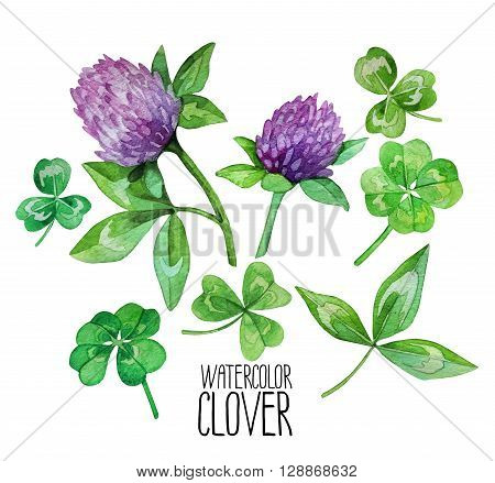 Watercolor clover set. Leaves and flowers. Four-leaf clover. Talisman for good luck isolated on white background