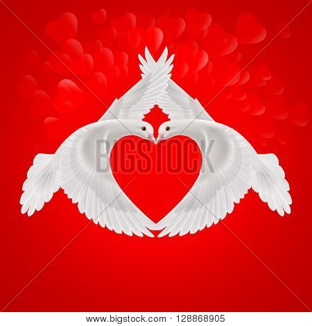 Two white doves the shape of the wings of the red heart