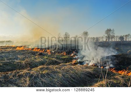 The uncontrolled burning of dry grass in spring