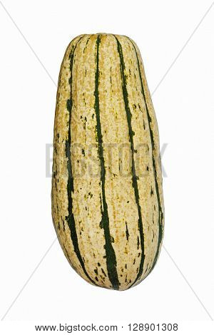 Delicata squash (Cucurbita pepo Delicata). Called Peanut squash Bohemian squash and Sweet potato squash also. Image of single squash on white background
