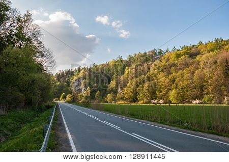Road amongst the rocks in Ojcow National Park Poland