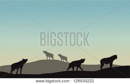 Silhouette of panther in hills at the morning